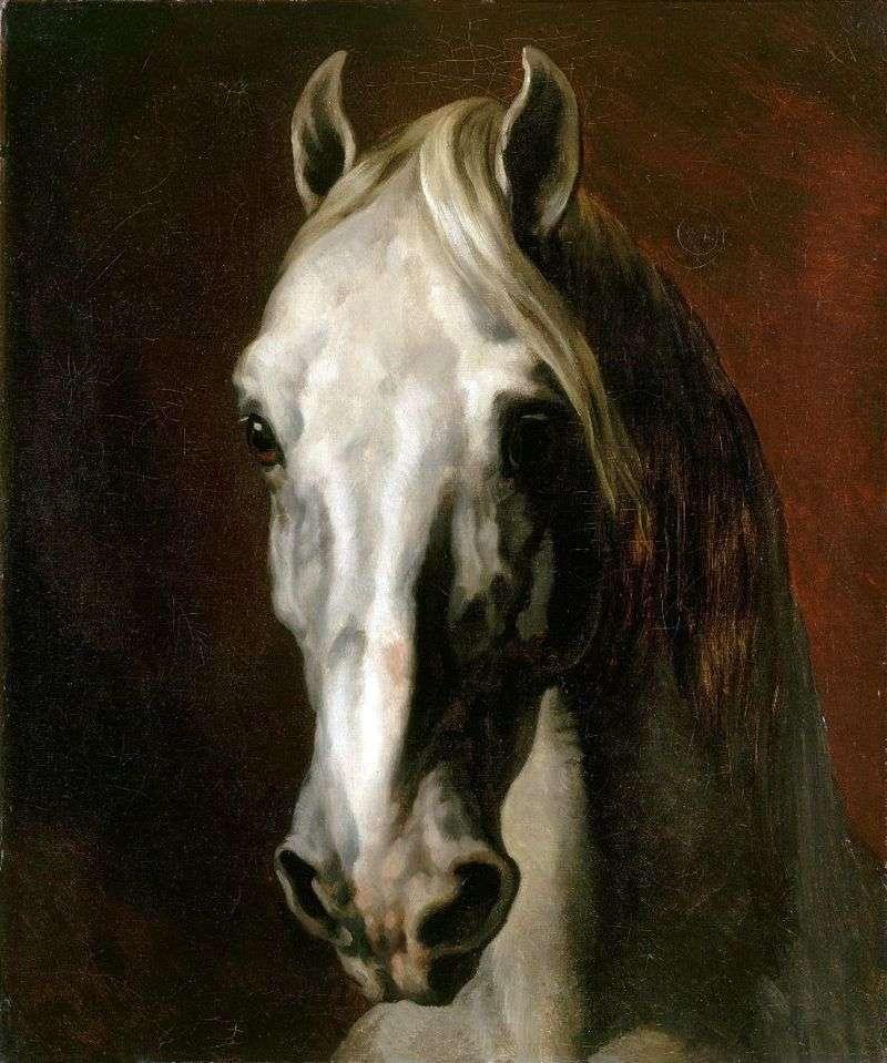 Biała głowa konia   Theodore Gericault
