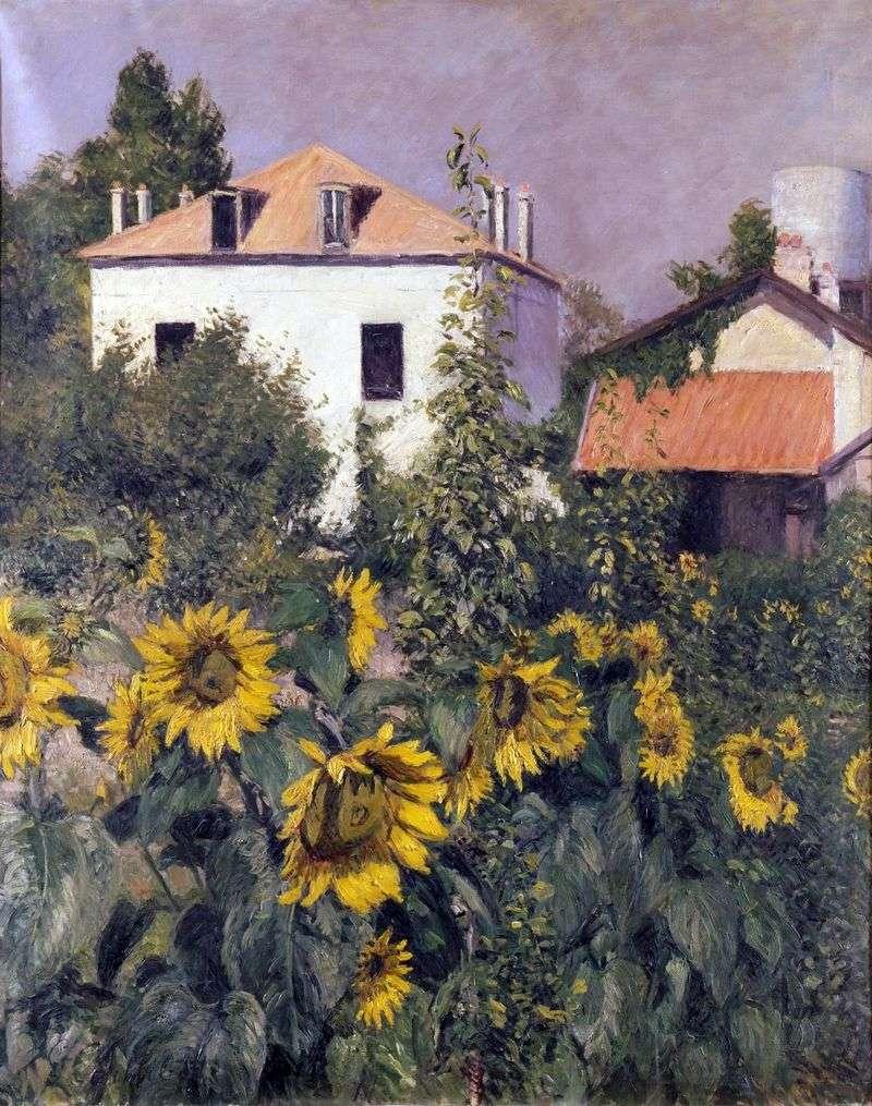 Słoneczniki, ogród w Petit Zenneviye   Gustave Caibot