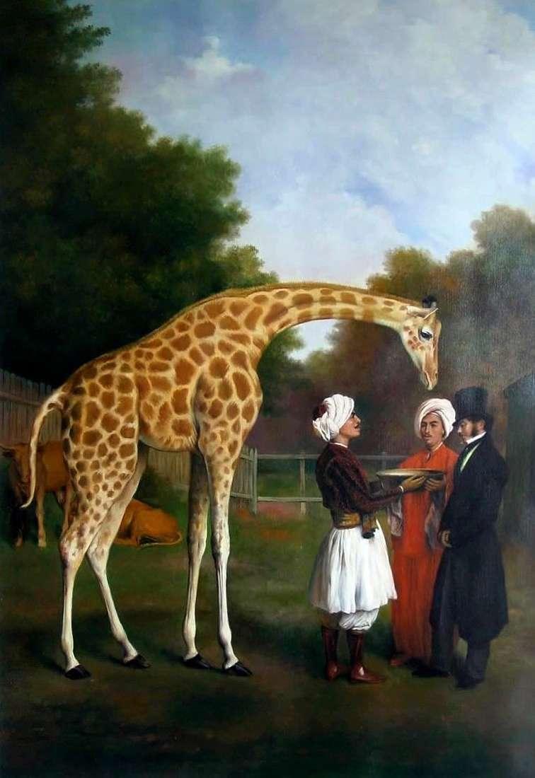 Nubijska żyrafa   Jacques Laurent Agassé