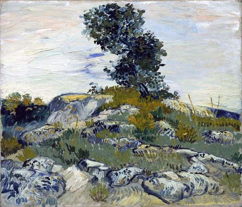 Głazy i dąb   Vincent Van Gogh