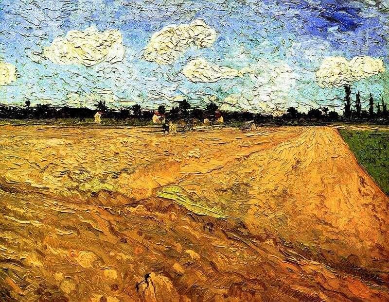 Zaorane pole   Vincent Van Gogh