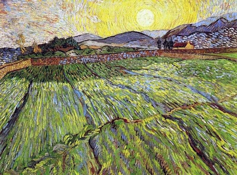Zaorane pole ze wschodzącym słońcem   Vincent Van Gogh
