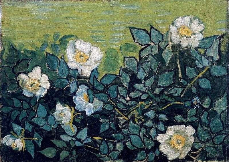 Dzikie róże   Vincent Van Gogh