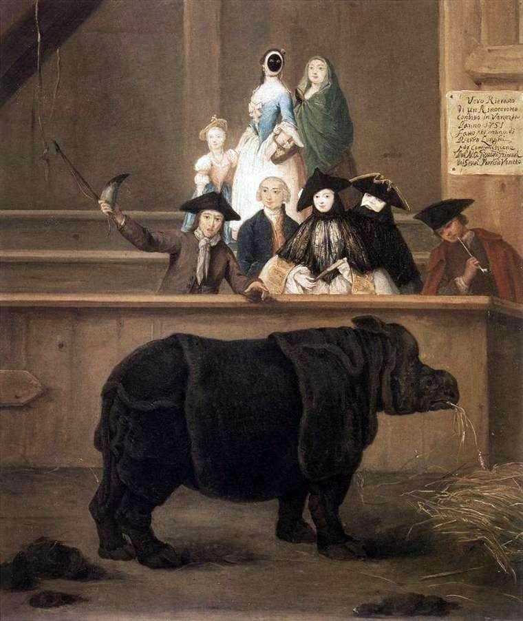 Rhino   Pietro Longhi