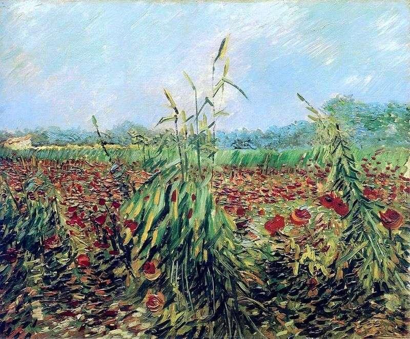 Zielone kłosy pszenicy   Vincent Van Gogh