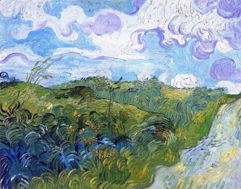 Zielone pola pszenicy   Vincent Van Gogh