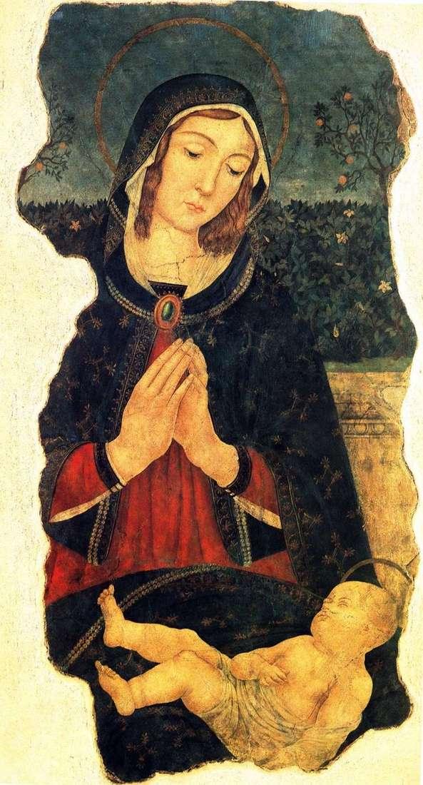 Maryja ze śpiącym dzieckiem   Piermatteo da Amelia