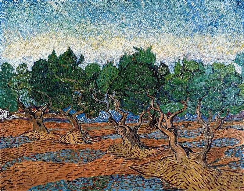 Olive Grove IV   Vincent Van Gogh