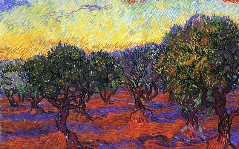 Olive Grove: Orange Sky   Vincent Van Gogh