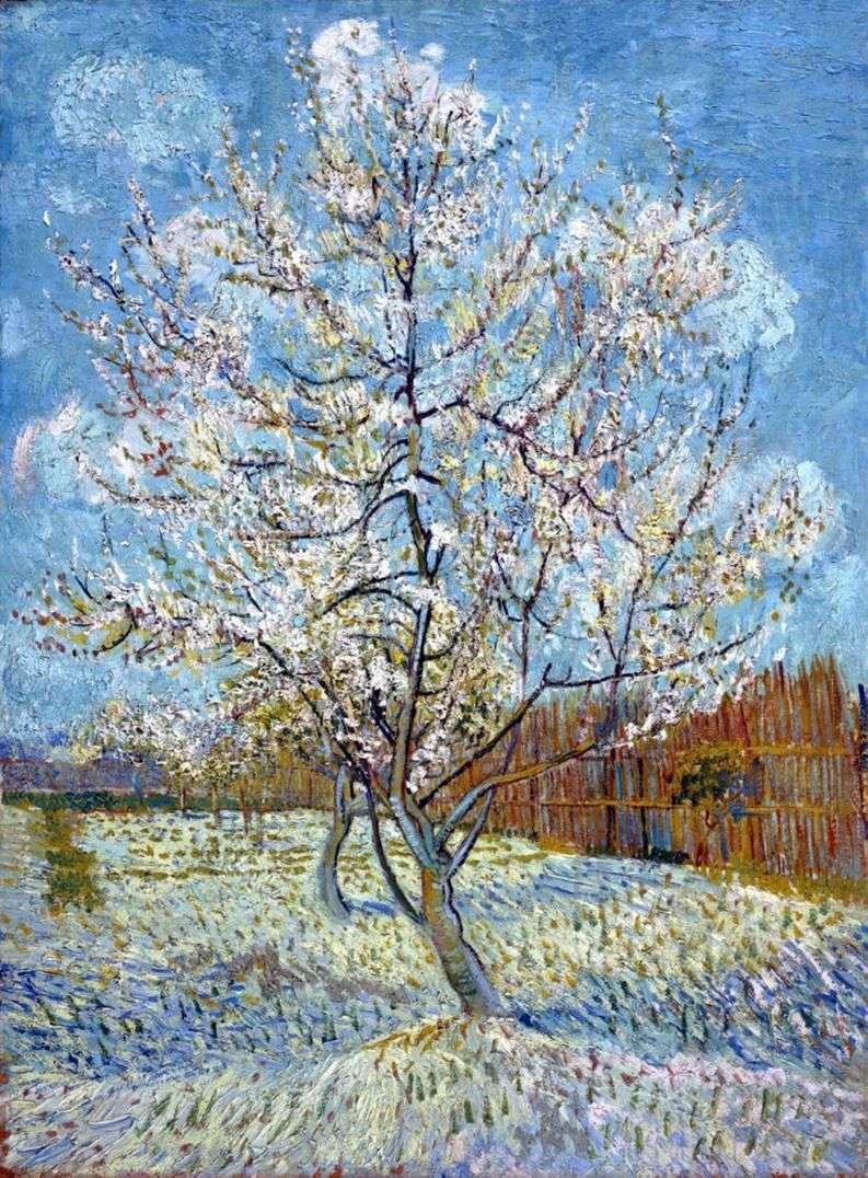 Brzoskwiniowe drzewo w rozkwicie   Vincent Van Gogh