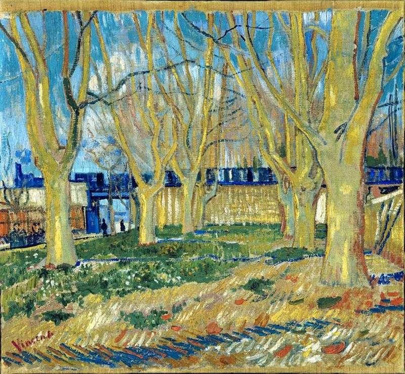 Samolot Aleja   Vincent Van Gogh