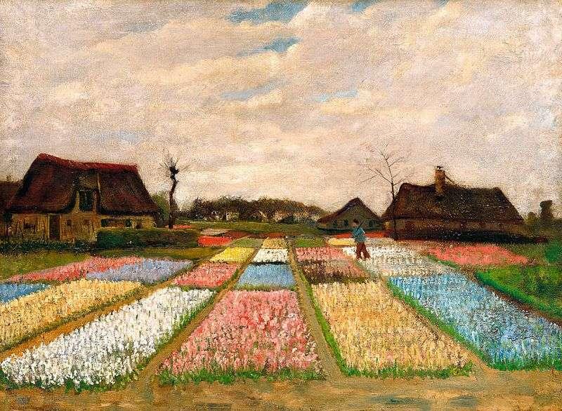 Tulip Fields   Vincent Van Gogh