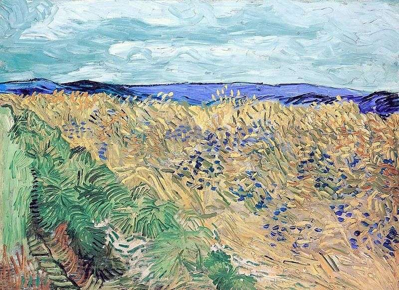 Wheatfield with Cornflowers   Vincent Van Gogh