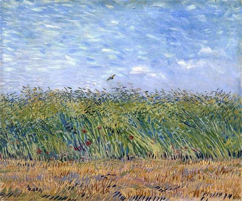 Pole pszenicy ze skowronkiem   Vincent Van Gogh