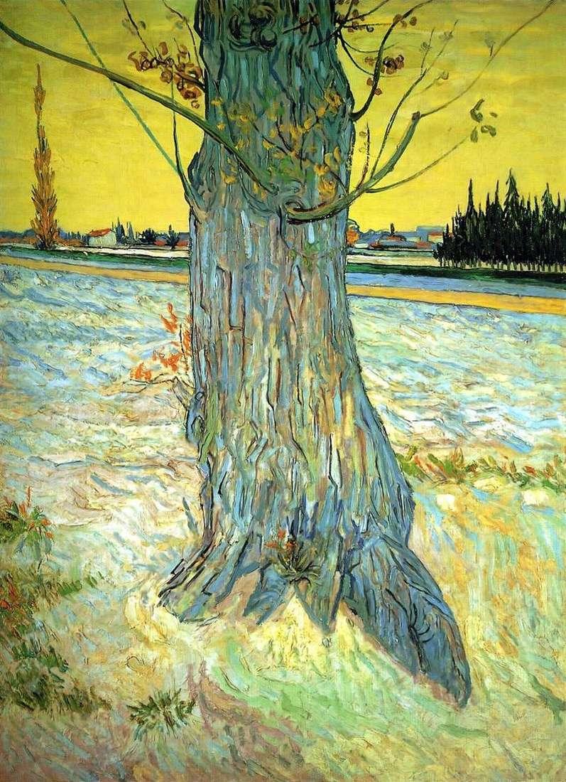 Pień starego cisa   Vincent Van Gogh
