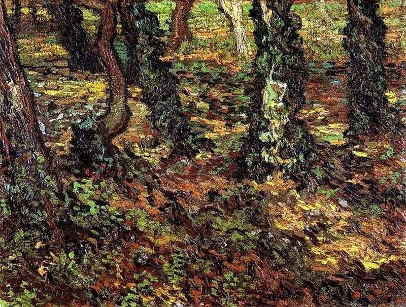 Pnie drzew z bluszczem   Vincent Van Gogh