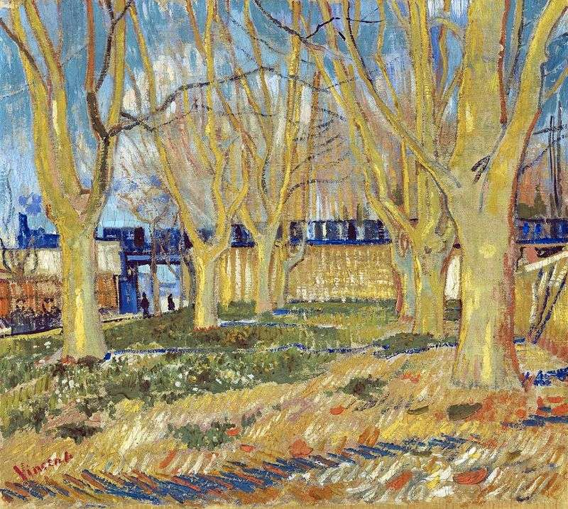 Platan Street w pobliżu stacji Arly   Vincent Van Gogh