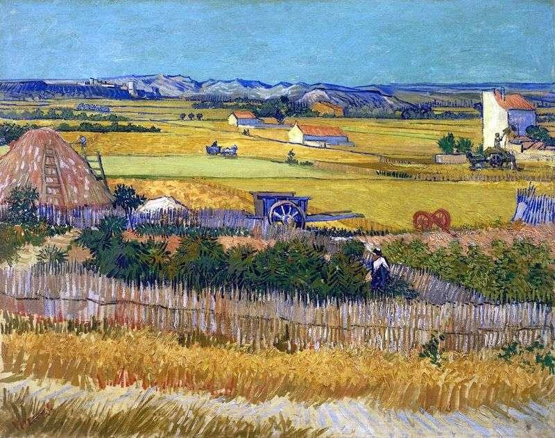 Zbiory w La Croce i Montmajor w tle (zbiory)   Vincent Van Gogh