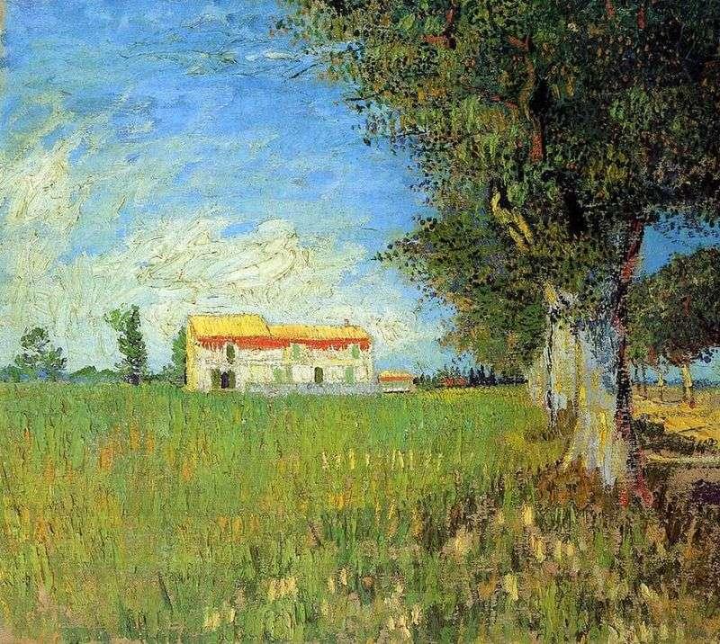 Farma Pszenicy   Vincent Van Gogh