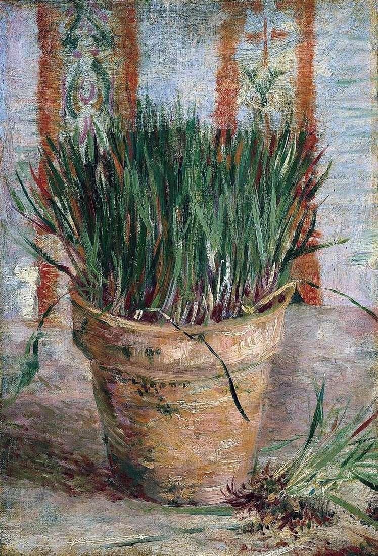 Doniczka z cebulką   Vincent Van Gogh