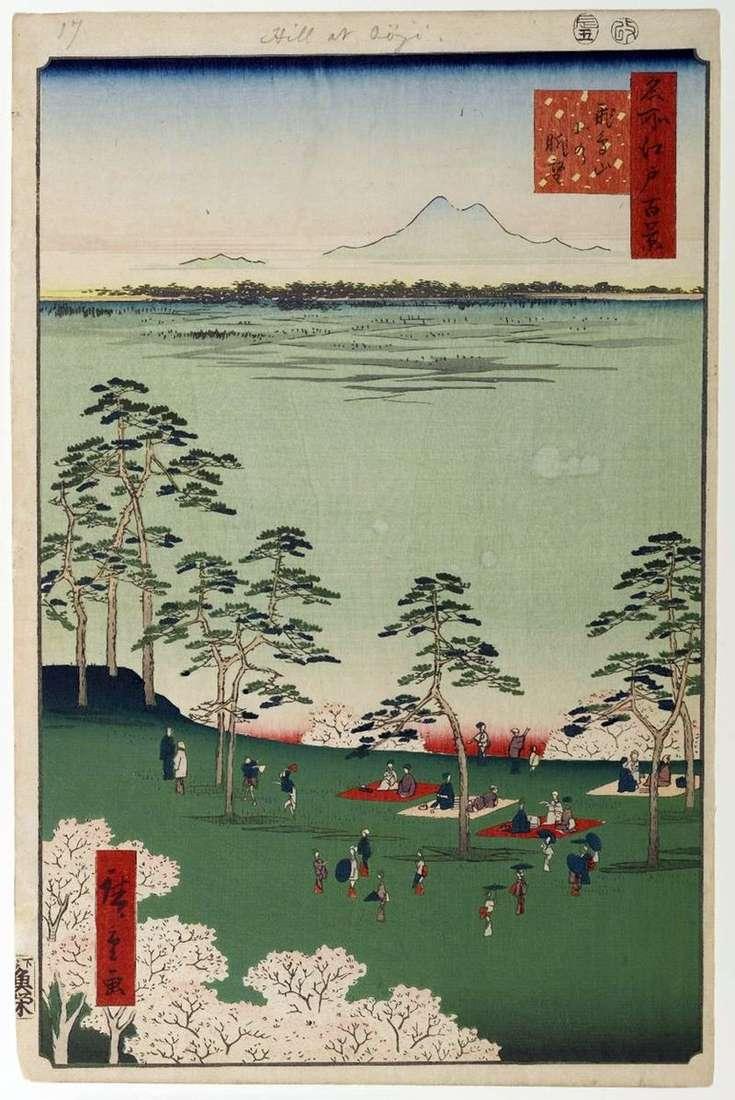 Zobacz północ od Góry Asukayama