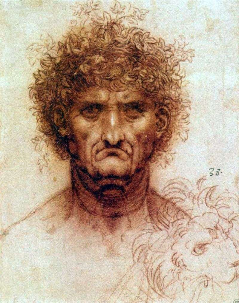 Głowa mężczyzny i lwa   Leonardo da Vinci