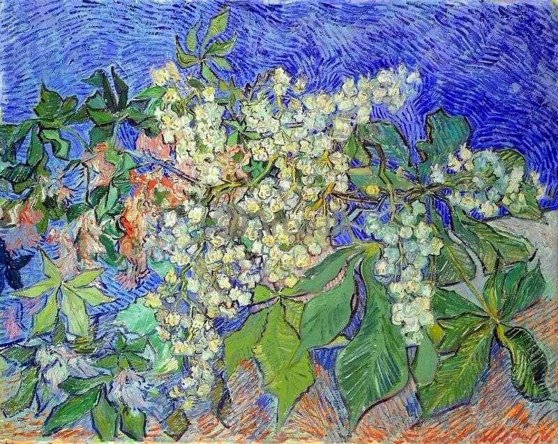 Kwitnące gałęzie kasztanów   Vincent Van Gogh