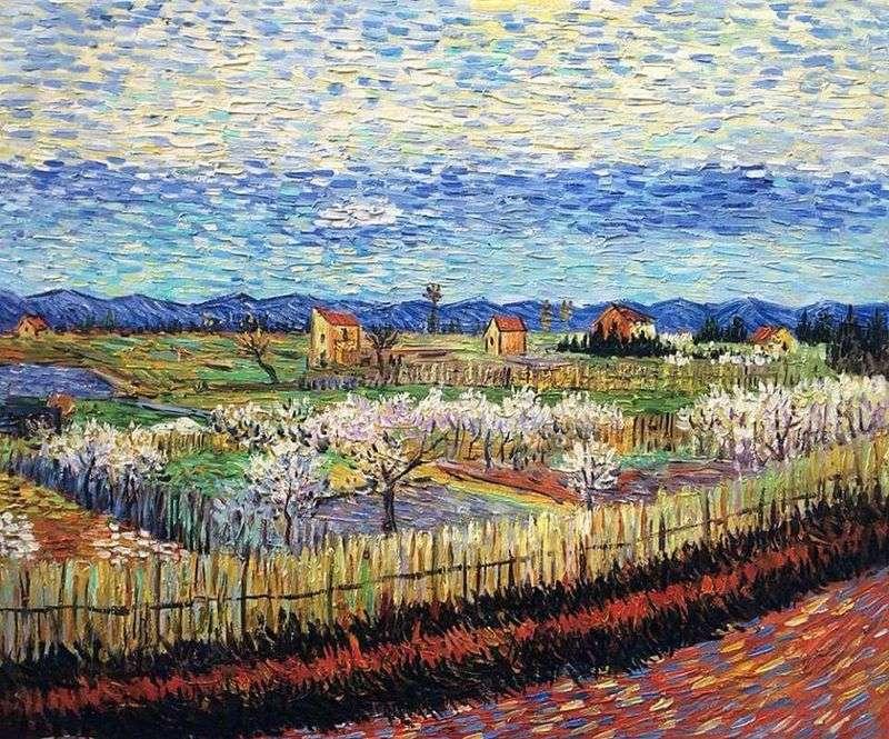 Kwitnące brzoskwinie   Vincent Van Gogh