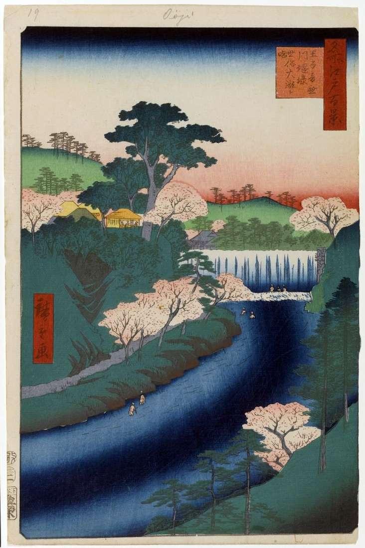 Tama na rzece Otonashigawa w Oji