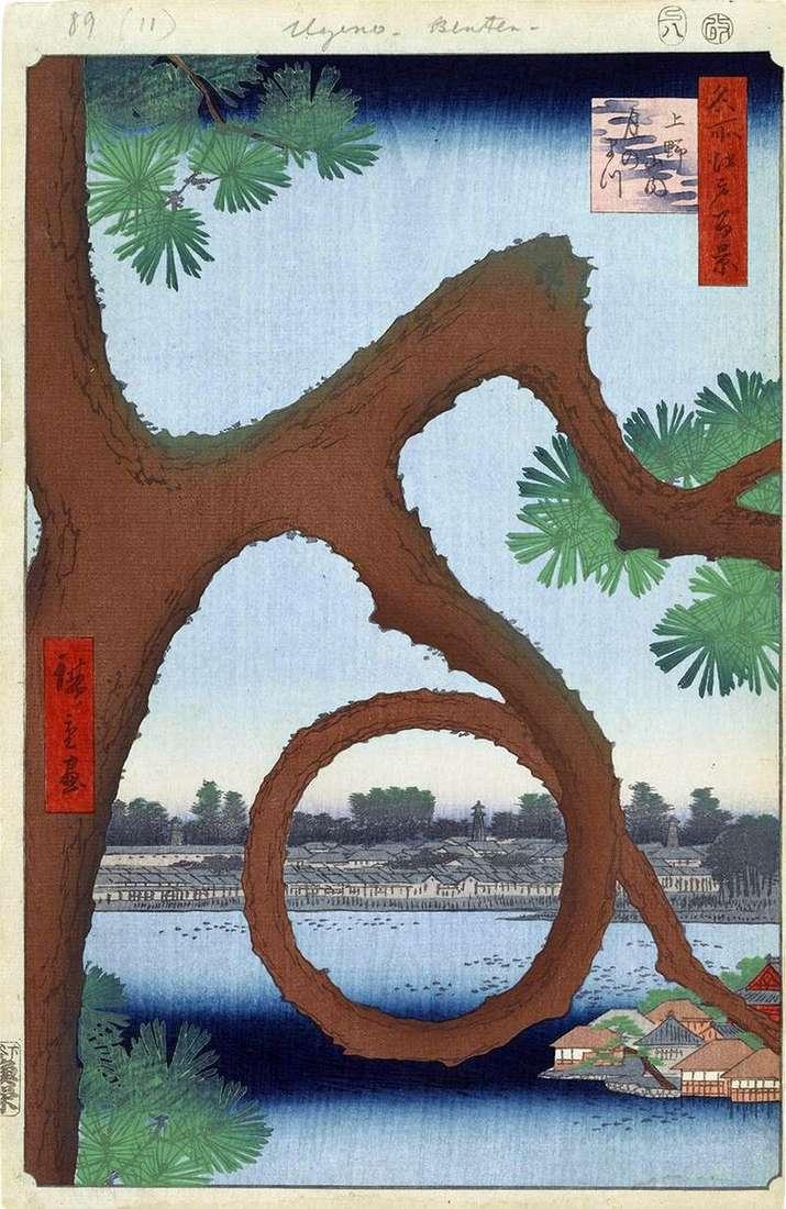 Sosnowa sosna na terenie klasztoru w Ueno   Utagawa Hiroshige