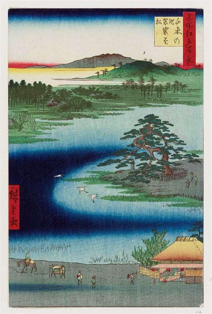Pond Senzoku no Nie, sosna Casacakemaiu   Utagawa Hiroshige