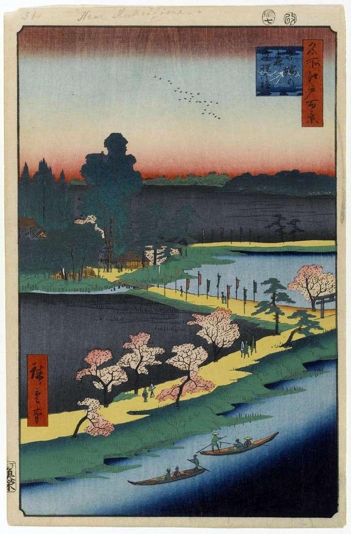 Połączone drzewa kamforowe w świątyni Azuma no Mori