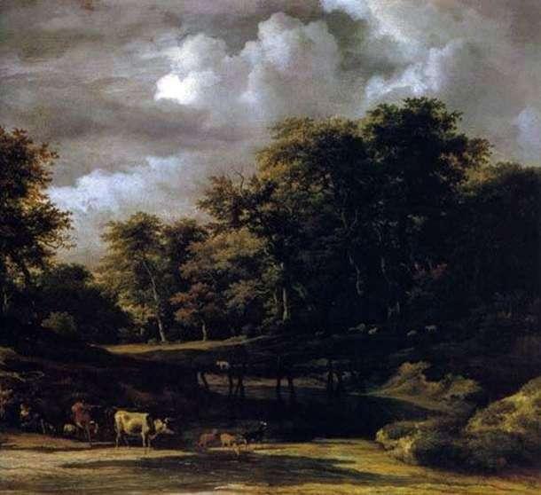 Krajobraz leśny   Jacob van Ruysdal