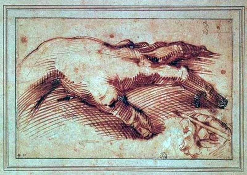 Ręka Michała Anioła   Michelangelo Buonarroti