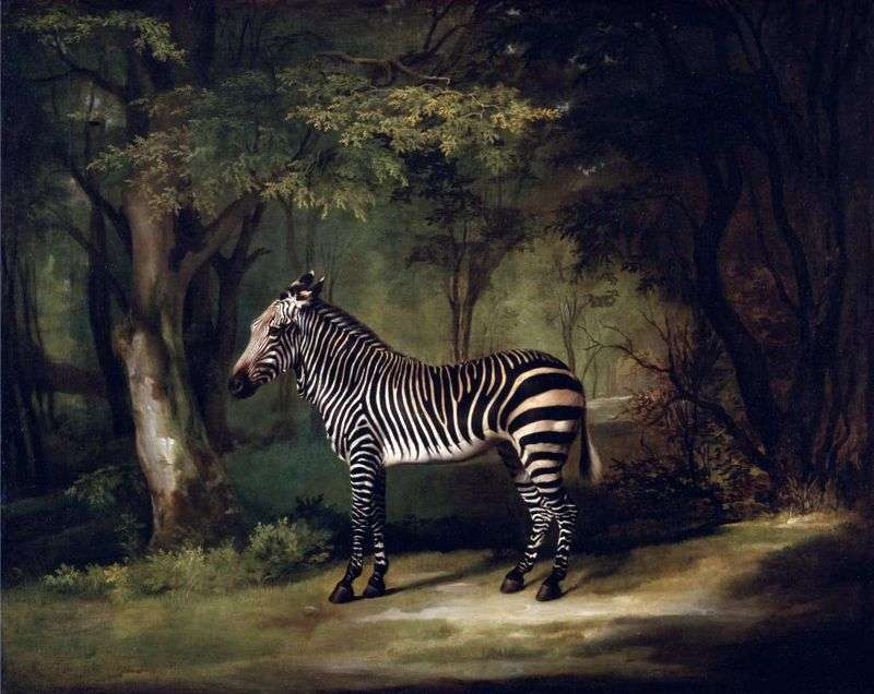 Zwierzęta egzotyczne   George Stubbs