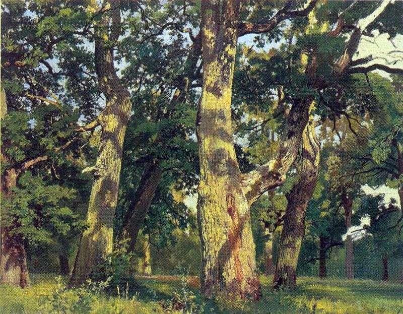 Oaks   Ivan Shishkin