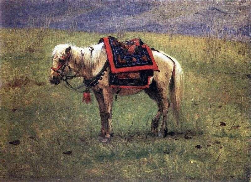 Kucyk himalajski   Wasilij Czapla