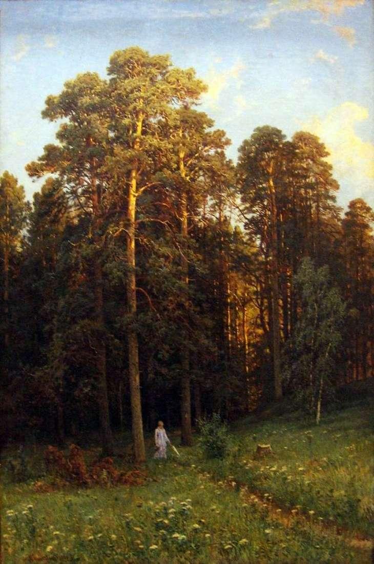 Na skraju sosnowego lasu   Szyszkina