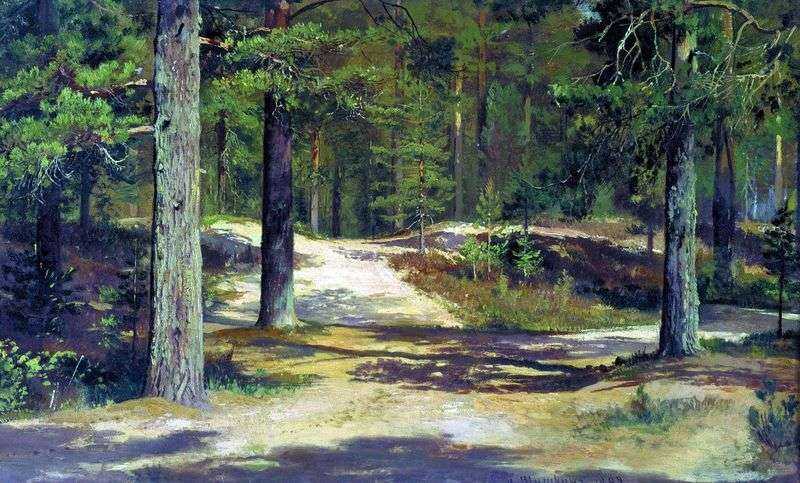 Las sosnowy   Iwan Szyszkin