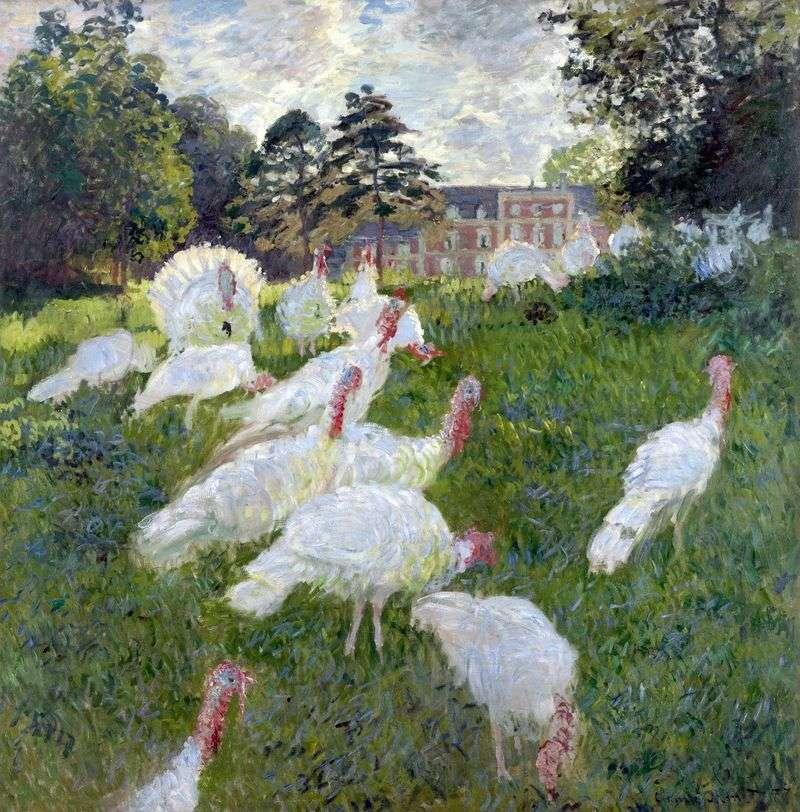 Białe indyki   Claude Monet