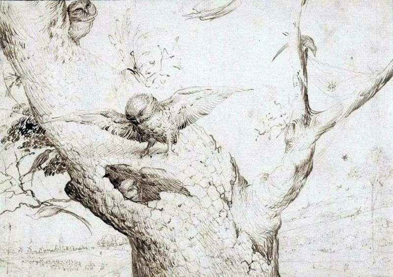 Owls Nest   Hieronymus Bosch