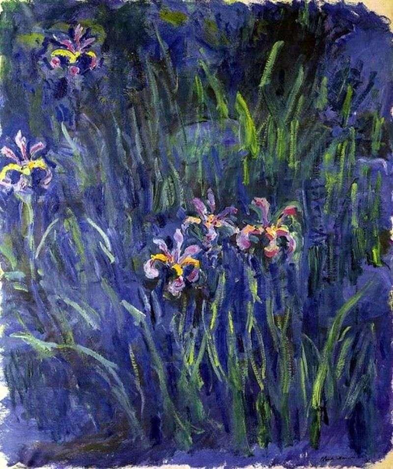 Irysy   Claude Monet