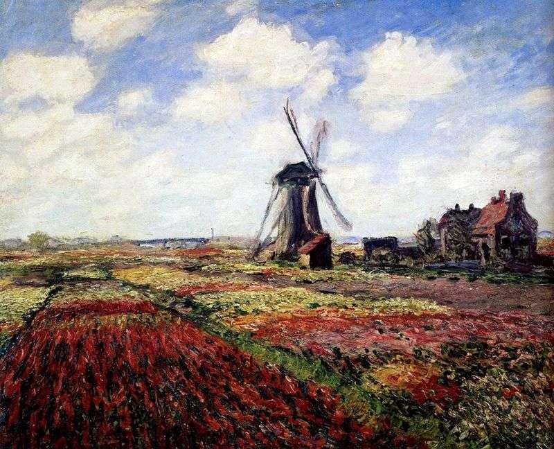 Tulipany Holland   Claude Monet
