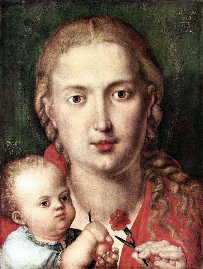 Madonna of the Carnation   Albrecht Durer