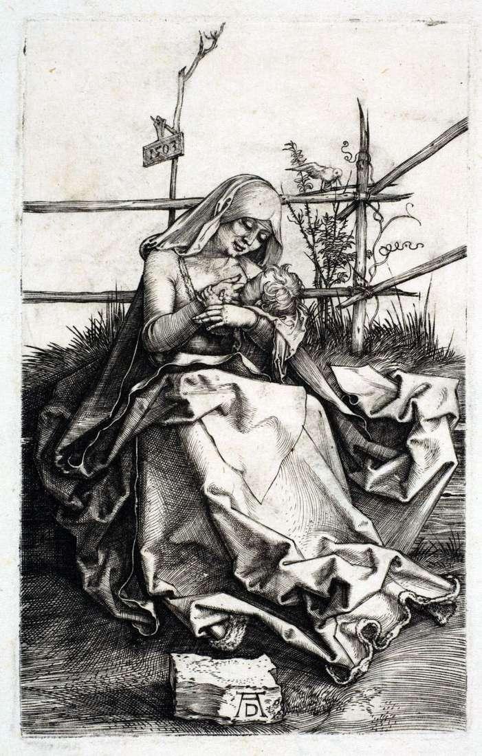 Maria na ławie z trawy   Albrecht Durer