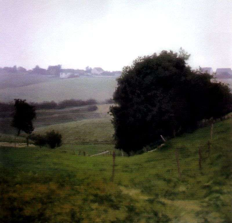 Country of Meadows   Gerhard Richter