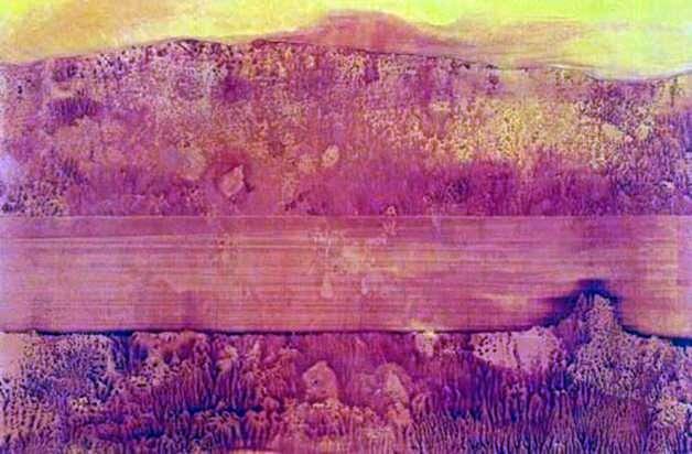 Rzeka Kolorado   Max Ernst