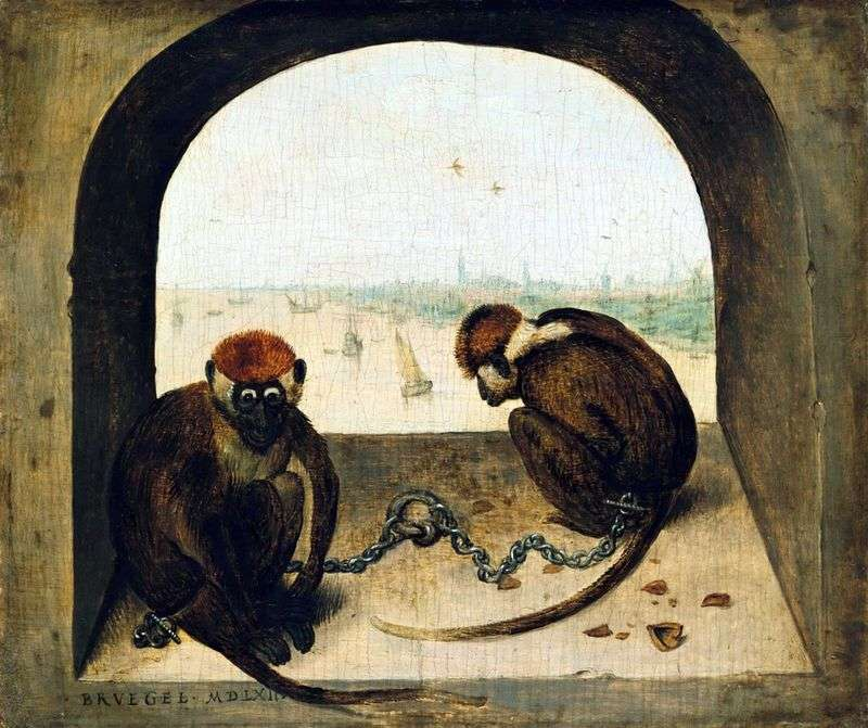 Dwie małpy   Peter Bruegel