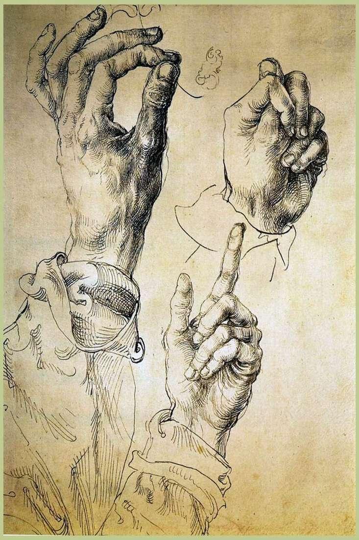 Etiuda Trzy ręce   Albrecht Durer
